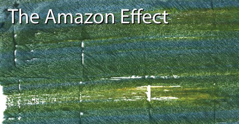 the_amazon_effect_promo