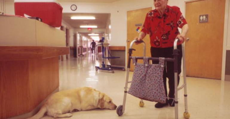 assisted living-woman with walker and dog