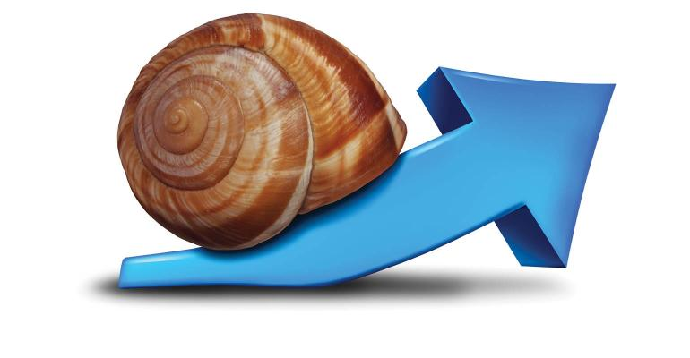 slow growth-GettyImages-533503469.jpg
