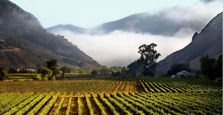 Beyond the Bottle: Vineyard Investment in California