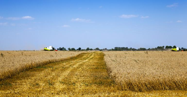 Credit Crunch for Farm Renters Compounds Stress on U.S. Growers