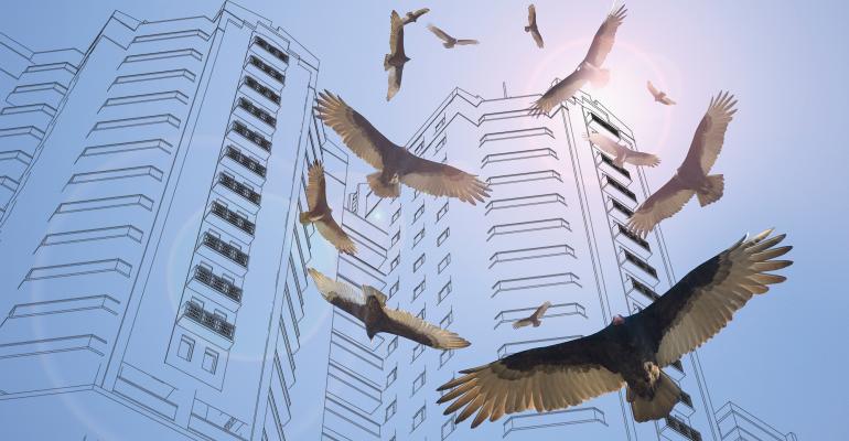 hotels vultures