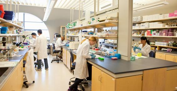 Where Are the New Opportunities for Investment in Biolab Assets?