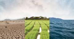climate change-1001629060.jpg