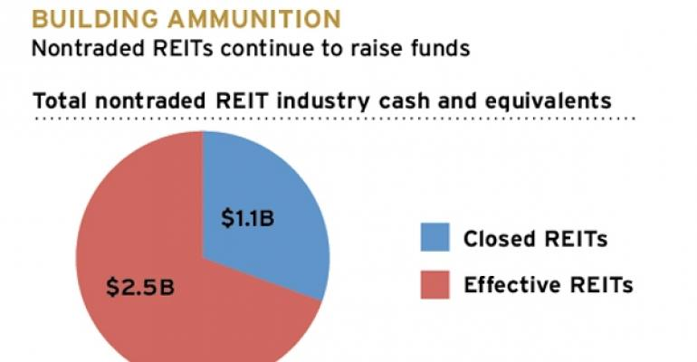 Nontraded REITs' Cash and Assets