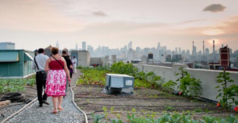 The Brooklyn Grange a oneacre farm atop The Standard Motor Products Building in Long Island City